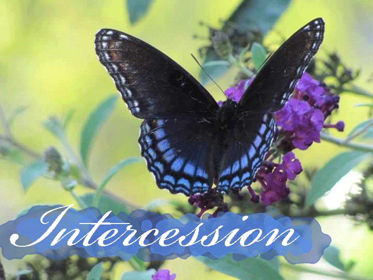 Intercession Team